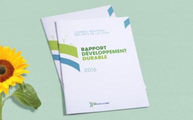 Rapport de développement durable